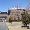 熊本県相談-県庁