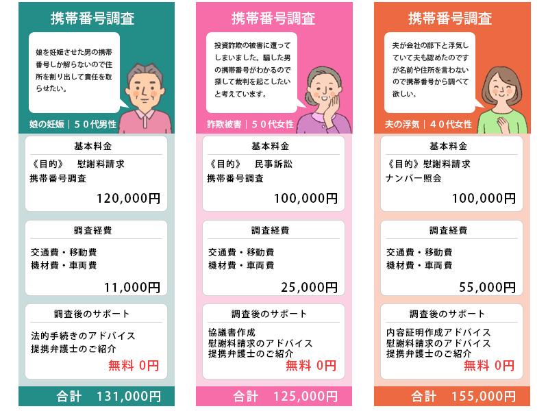携帯電話番号調査の料金事例